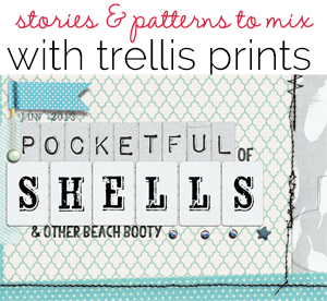 Storytelling and Patterned Paper Mixing with the Trellis Prints