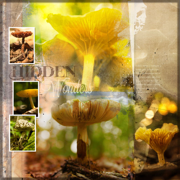 Scrapbooking Ideas For Collaged Storytelling | Andrea | Get It Scrapped