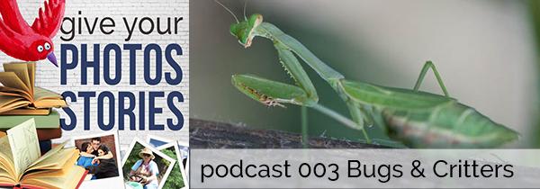 Podcast600HeaderBugs