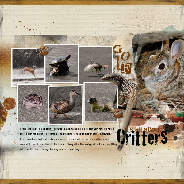 Ideas for Scrapbook Page Storytelling with Photos of Bugs and Critters | Terry Billman | Get It Scrapped