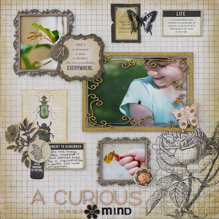Ideas for Scrapbook Page Storytelling with a Curated Natural History Style | Kristy T | Get It Scrapped