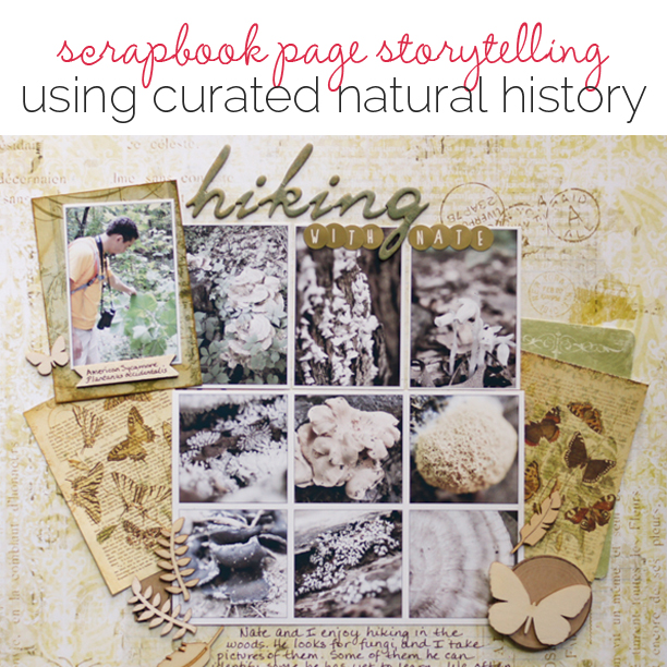 Ideas for Scrapbook Page Storytelling with a Curated Natural History Style | Get It Scrapped