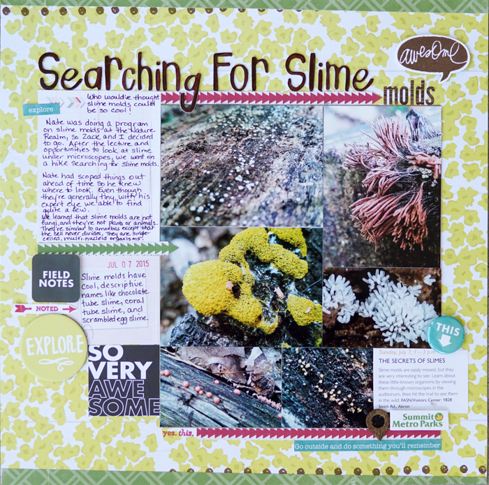 Scrapbooking Ideas for Pages About Taking A Walk   Marcia Fortunato   Get It Scrapped