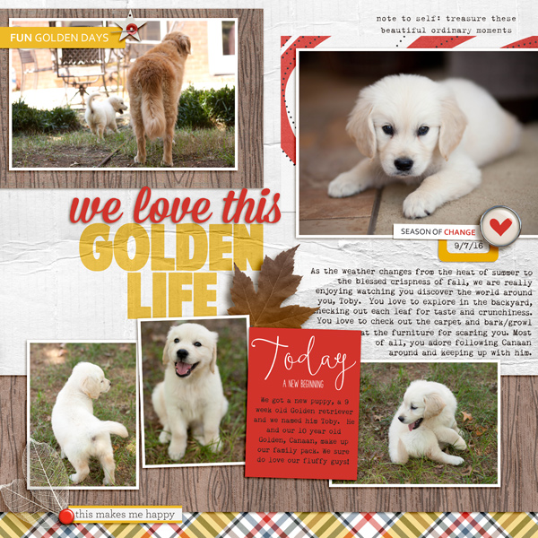 Scrapbook Page Sketch and Template #116 | Kelly Prang | Get It Scrapped